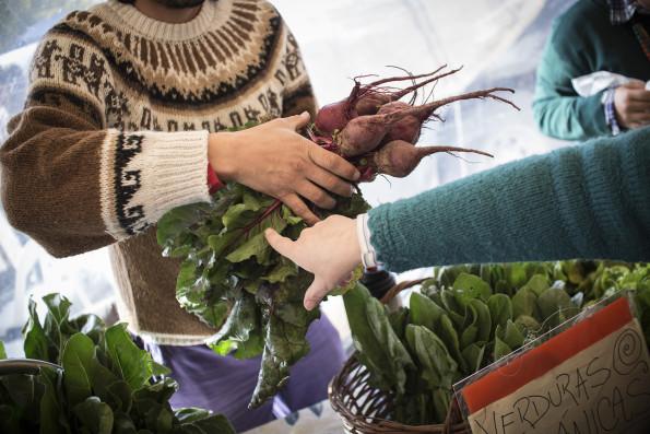 Manifiesto Feria_Agroecologica_Alta Gracia_SR (33)