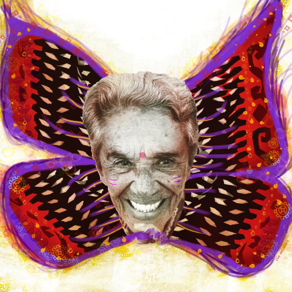 chavela mariposa roja